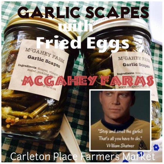 collagefried eggs.jpg